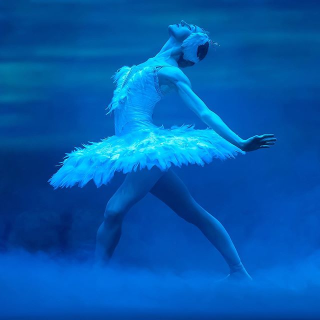 Swan Lake Ballet - Everything You Need to Know - Cheap Tickets!